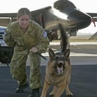 Australia saca a la luz casi 850 casos de abuso denunciados en el Ejército